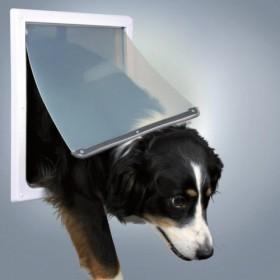 Porta cane a 2 funzioni...