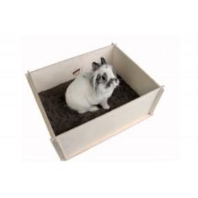 Bunny Interactive DiggingBox
