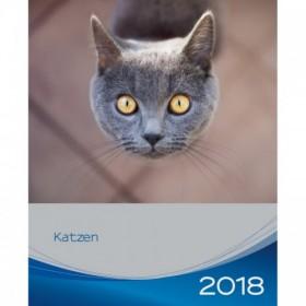 Calendario gatti