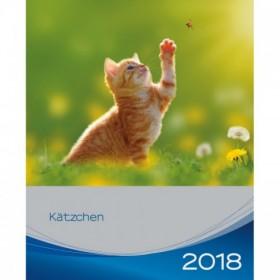 Calendario gattini