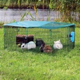 Recinto natura da esterno per animali giovani, con rete di protezione