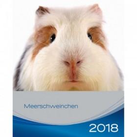 Calendario porcellini d'India