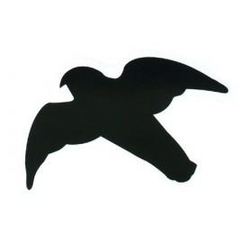 Profili di uccelli rapaci