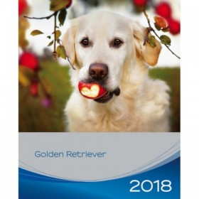 Calendario Golden Retriever