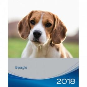 Calendario Beagle