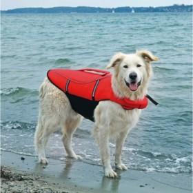 Salvagente per cani