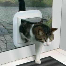 Porta gatto a 4 funzioni per porte in vetro