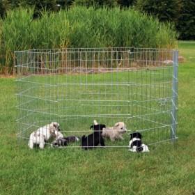 Recinto per cuccioli