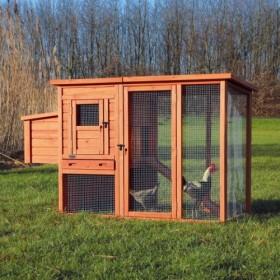 Casetta per galline con recinto da esterno