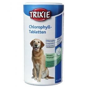 Compresse alla clorofilla